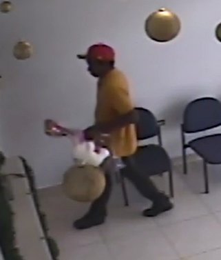 Armed Robber sought by police