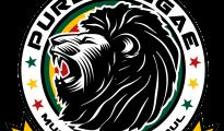 Pure Reggae logo