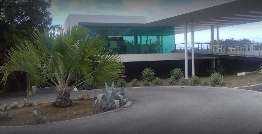 Library Mongui Maduro