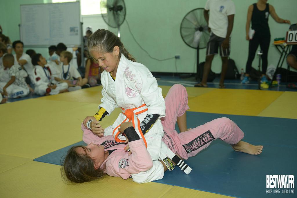 St. Maarten Martial Arts Federation - nata mount