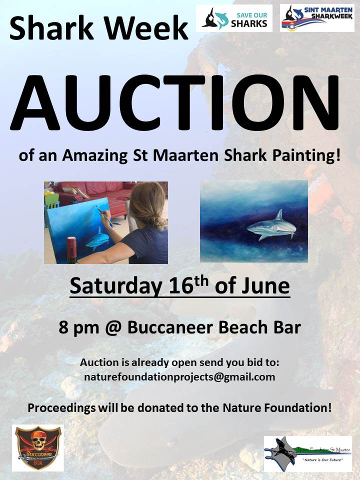 Auction Shark Painting
