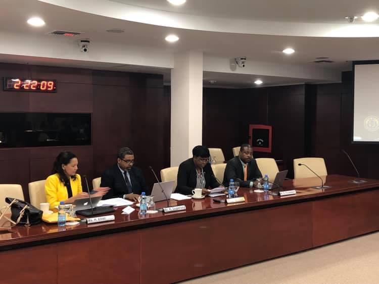 TelEM presentation to Parliament 05 Feb 2019