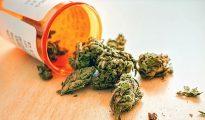 Marijuana medical bottle
